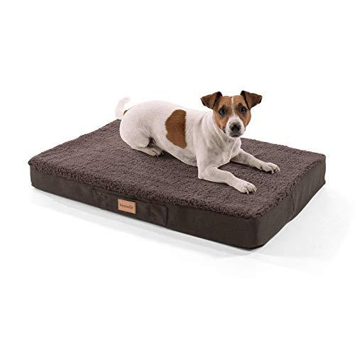 brunolie Balu kleines Hundebett in Dunkelbraun, waschbar, orthopädisch und rutschfest, kuscheliges Hundekissen mit atmungsaktivem Memory-Schaum, Größe S (72 x 50 x 8 cm)