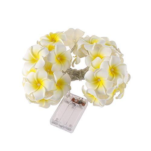 Plumeria Lichterketten, Led Fairy Lighting String Für Weihnachten, Haus, Garten, Hof, Veranda, Baum, Party, Urlaub Dekoration