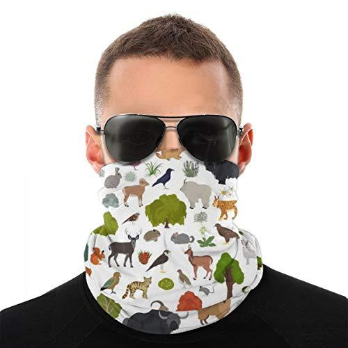 Apine Tundra Biome, Región natural Cubiertas faciales Pasamontañas lavables reutilizables y transpirables con 1 pieza de protección de tela contra el polvo, el polen, la caspa de mascotas