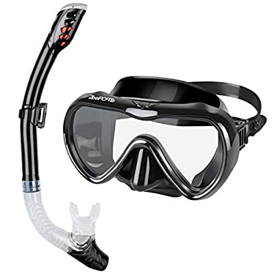 ZEEPORTE Snorkel Set, Anti-Fog Tempered Glass Panoramic Diving Mask, Dry Top Snorkel Gear with Purge Valve and Anti-Splash Guard, Watertight Anti-Impact Snorkeling Mask for Adults (Black, Medium)