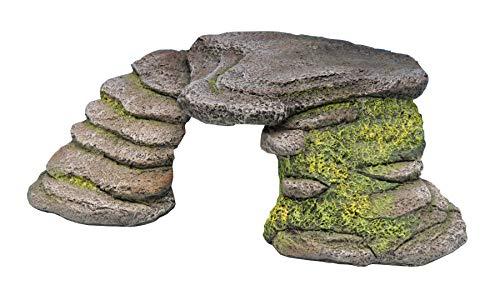 Penn-Plax Small Shale Step Ledge for Aquariums & Terrariums, Adds Hiding Spots, Swim Throughs, Basking Ledges for Fish, Reptiles, Amphibians, Stone (REP181)