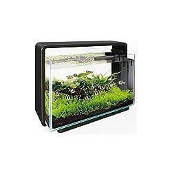 60l aquarium besatz beispiele aquarium fische. Black Bedroom Furniture Sets. Home Design Ideas