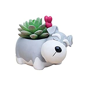 Silk Flower Arrangements Cuteforyou Cute Animal Shaped Cartoon Home Decoration Succulent Vase Flower Pots (Schnauzer)