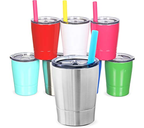 Colorful PoPo Kids Stainless Steel Cup Lovely Small Rambler Tumbler Sippy Cup with Lid and Silicone Straw, 8.5 OZ (1, Natural Color)