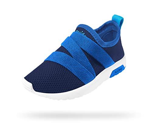 Native Kids Shoes Phoenix (Toddler/Little Kid) Regatta Blue/Victoria Blue/Shell White 10 Toddler M