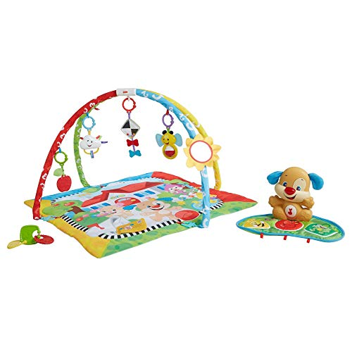 Fisher-Price rire et Apprendre Chiot N Pals Learning Gym