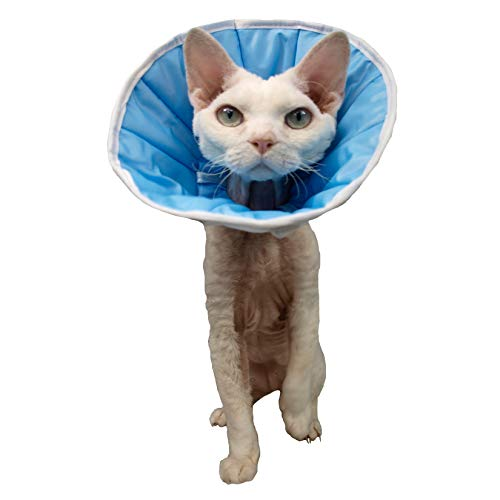 Collar, cono postoperatorio, para perro, gato o conejo (1,5 (S/M) – Contorno del cuello: 22-28 cm, Altura: 14)
