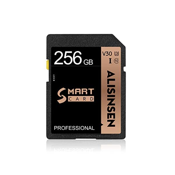 SD Card 256GB Memory Card 256GB Flash Memory Card Class 10 High Speed Security Digital...