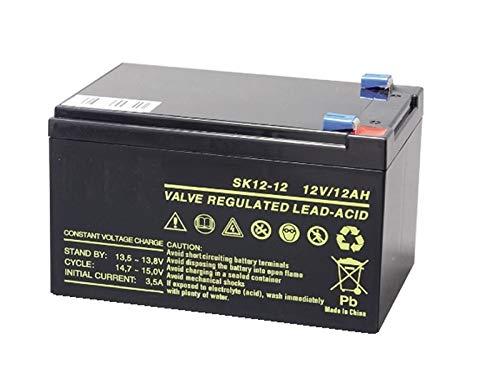 Accu voor PIOMBO 12 V 12 AH oplaadbaar elektrisch, Gruppi compatibel PEG Perego CicLICA ORIGINAL