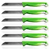 Solingen Obstmesser Schälmesser Gemüsemesser Allzweckmesser Edelstahl Messer rostfrei Küchenmesser Tafelbesteck Messerset Alltagsmesser 20er Set Grün