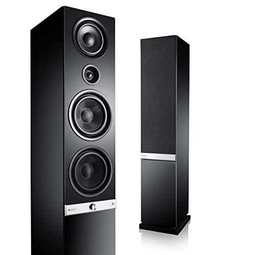 Teufel Raumfeld Stereo L High End-Streaming-Standlautsprecher