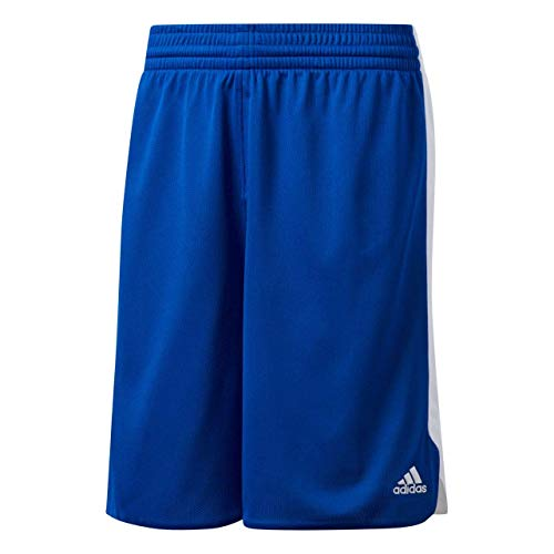 Unbekannt - Basketball-Shorts für Damen in Collegiate Royal/White, Größe S
