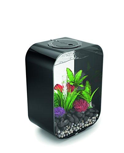 OASE biOrb LIFE 15 LED Aquarium, 15 Liter - Aquarien Komplett-Set mit LED Beleuchtung und patentiertem Filter-System, Acryl-Becken in Schwarz