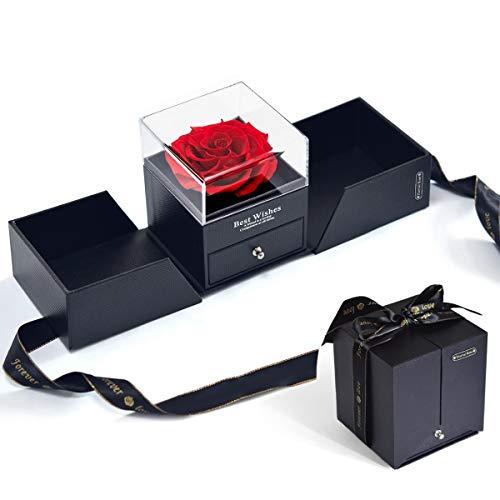 Ewige Echte Rose Geschenkbox, Hallooki Haus Schönheit und das Biest Rosenbox Handgemachte Infinity Rose konservierte Blumen im Schmuckschatulle für Valentinstag, Hochzeit, Muttertag, Weihnachtstag