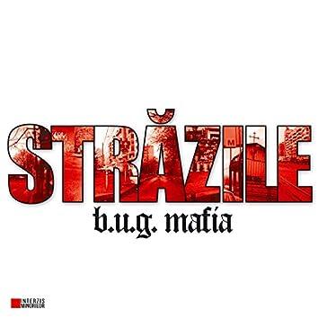 Strazile (Maxi-Single)