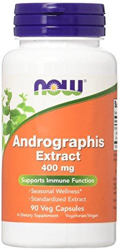 Now Foods, Andrographis-Extrakt, 400 mg, 90 vegane Kapseln, glutenfrei