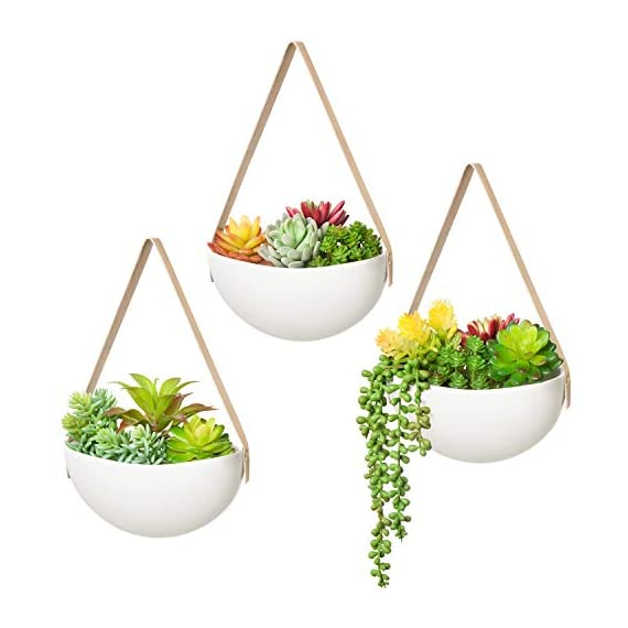 Mkono Ceramic Hanging Planter Wall Planters Set of 3 Modern Flower Plant Pots for Succulent Herb Air Plant Live or Faux… 4 These wall hanging planter can be used to add some vertical greenery to any wall in your home, great to display your lovely plants like cactus, herbs, succulents, air plants or other small plant. Beautifully for storage paint brushes, pens or other small things. Suitable for indoor and outdoor use. Material: white ceramic flower pot, leather strap and brass screws. Wide version of the plant pot will be better to display your plant collection. Wall hanging design is perfect for keeping your lovely plants out of the reach of pets and children! Bring modern design and industrial style to your wall with a leather strap and a solid brass screw. High fired porcelain creates a white smooth matte glaze look, and the interior is finished with glaze. Elevates the room and accentuates the beauty of your houseplants with its simple but sculptural presence.