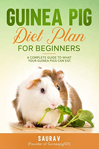 Guinea Pig Diet Plan: A Complete Guide To What Your Guinea Pigs Can Eat