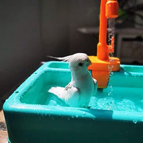 SGQCAR Pet Parrots Bathtub Pretend Play Kitchen Sink Toy Electric Dishwasher Playing Toy Parrot Bathtub with Faucet Bird Bathing Box Bird Feeder Bird Bathroom Toys Green
