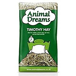 Where to buy Animal Dreams Timothy Hay