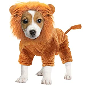 Idepet Pet Costume,Halloween Dog Cosplay Lion Costume Christmas Puppy Small Dog Funny Cosplay Outfits,Cats Funny Apparel Dressing Up Parties Pet Clothes Suits