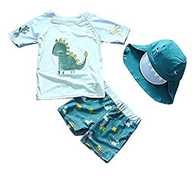Baby Toddler Boys Two Pieces Swimsuit Set Swimwear Dinosaur Bathing Suit Rash Guards with Hat UPF 50+ (Lake Blue, 9-18 Months) by