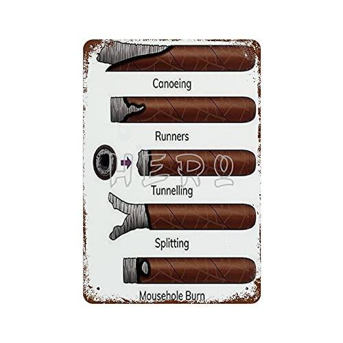 XREE Milan Things Your Cigar Should Not Be Doing Art Targa di latta 30 x 40 cm vintage accessori per la casa con insegne in metallo retrò