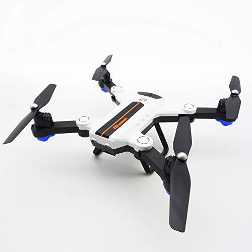Rayline F22G Drohne Quadrocopter Aerocraft RC mit Licht, WiFi, Fernbedienung 2.4GHz und HD Kamera