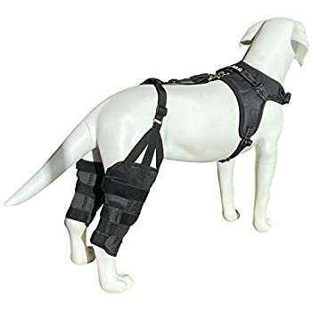 Labra Dog Canine K9 Dual Knee Stifle Brace Wrap Metal Hinged Flexible Support Treat ACL CCL Luxating Patella Cruciate Ligament Sprain Strain Tear Injuries  Large
