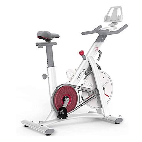 CHENYE Bicicletas Estáticas Indoor Spinning Sports Bike silenciosa casa en Bicicleta Equipo de la Aptitud magnética for Bicicleta de Ejercicio