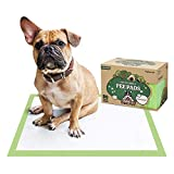 Pogi's Training Pads (50-Count) (24x24in) - Large, Super-Absorbent, Earth-Friendly Puppy Training Pads for Small to Large Sized Dogs