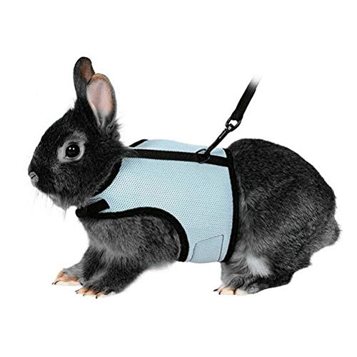 POPETPOP Adjustable Pet Rabbit Bunny Harness and Leash - Soft Small Pet Outdoor Walking Running Harness with Lead - Small Animal Accessories - Size L (Sky Blue)
