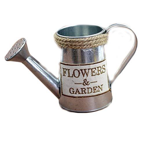 Eillybird Franse stijl irrigatie pot ijzer bloem gietkan village vintage Franse stijl irrigatie pot metaal pot bloem plant vaas met vogel patroon