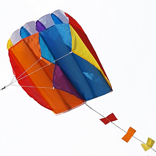 Besra Colorful Parafoil Kite with Long Tail Easy to Fly Outdoor Fun Sports for Kids & Adults(20inch)