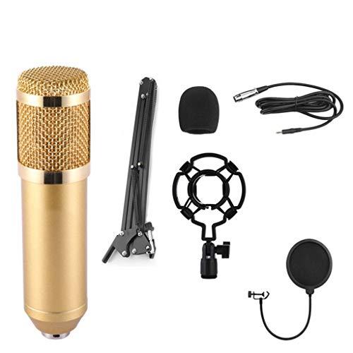 Kit microphone professionnel à condensateur Ensemble...