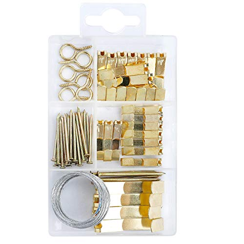 COTODO Picture Hanging Kit Includes Hooks, Nails,and Picture Hanging Wire 55pcs