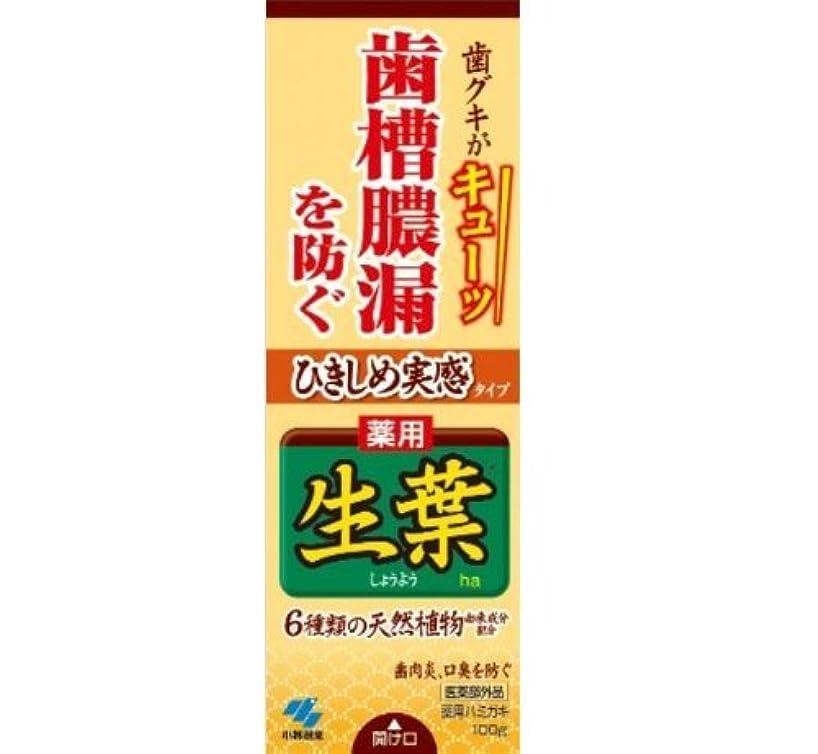 リネン法令禁止するひきしめ生葉 100g【お得な27本セット】