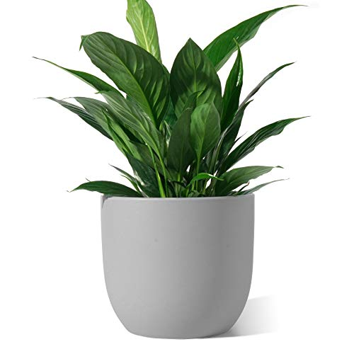Ceramic Plant Pot - POTEY 7 Inch Modern Round Decorative Indoor Planter with Drainage Hole and Plug for All House Plants - 809, Gray