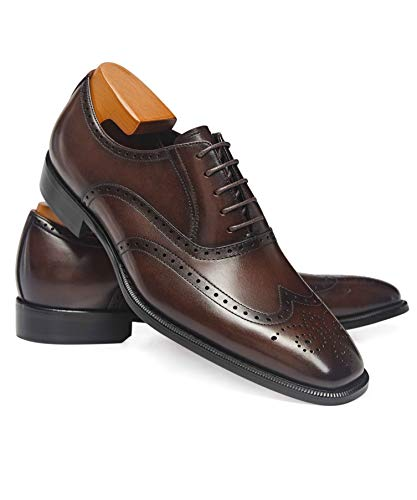 Frasoicus Mens Dress Shoes Classic Leather Business Oxfords Formal Dress Shoes for Men