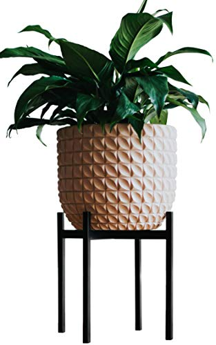 AUBURY Plant Stand for Indoor & Outdoor Pots - Black, Metal Potted Plant Holder for House, Garden & Patio - Mid-Century Patented Design - Medium