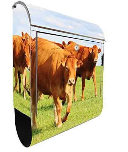KlebeSpatz® Motiv Briefkasten Maxi mit Zeitungsfach Zeitungsrolle für A4 Post slk shop Groß Kuh braun