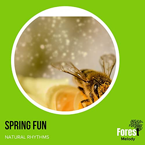 Spring Fun - Natural Rhythms