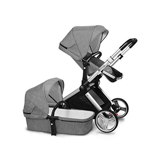 GKBMSP Kinderwagen 2-in-1 Kinderwagen Reise System Faltbarer Kinderwagen mit umkehrbarer Wiege Zwei-Wege-Reise,Gray