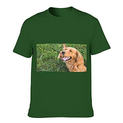 COMBON Shop Camiseta de algodón para hombre, diseño de Golden Retriever tumbado en el césped con cuello redondo elástico - Camisa corta para competiciones