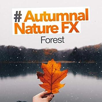 # Autumnal Nature FX