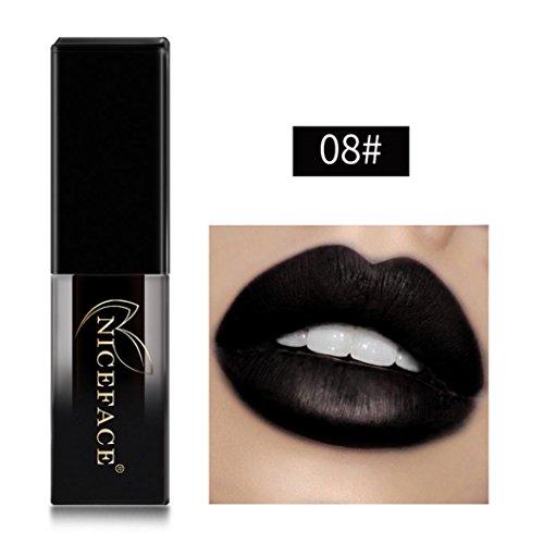 Lippenstift Matt, HUIHUI Lipstick Schönheit Lippe Gloss Long Lasting Moisturizing Lippenstift Lip Gloss Fashionable Colors Matte Liquid Lipstick (08#)