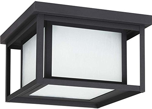 Sea Gull Lighting 79039-12 Hunnington - Lámpara de techo para exteriores (2 luces), color negro