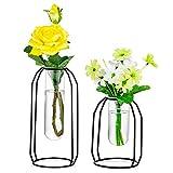 Nuptio Vasen 2er-Set Glasvasen mit Metallrahmen, Moderne Schwarze Rahmenzylinder-Terrassen mit Durchsichtigen Vasen, Blumenhalterdekorationen für Hochzeitswohnzimmer, Büro, Party