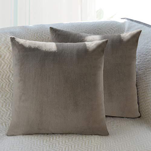 Fittia Funda de almohada de terciopelo ultra suave con cierre oculto para sala de estar, dormitorio, sofá, coche, café, 40 x 40 cm, 2 unidades
