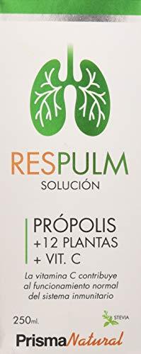 RESPULM SOLUCION 250ML PRISMA